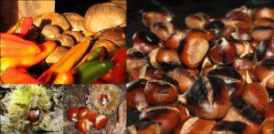 Funghi e castagne Hotel Sette e Mezzo